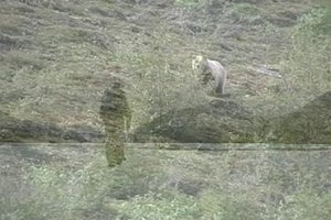 Preview: Alone Across Alaska