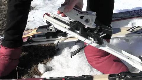 Backcountry Ski Setups