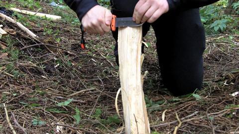 Survival Lab: Carve a Feather Stick