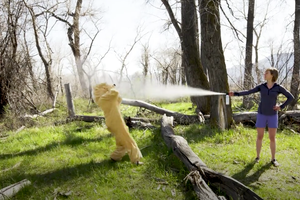 Watch: How to Master Your Bear Spray