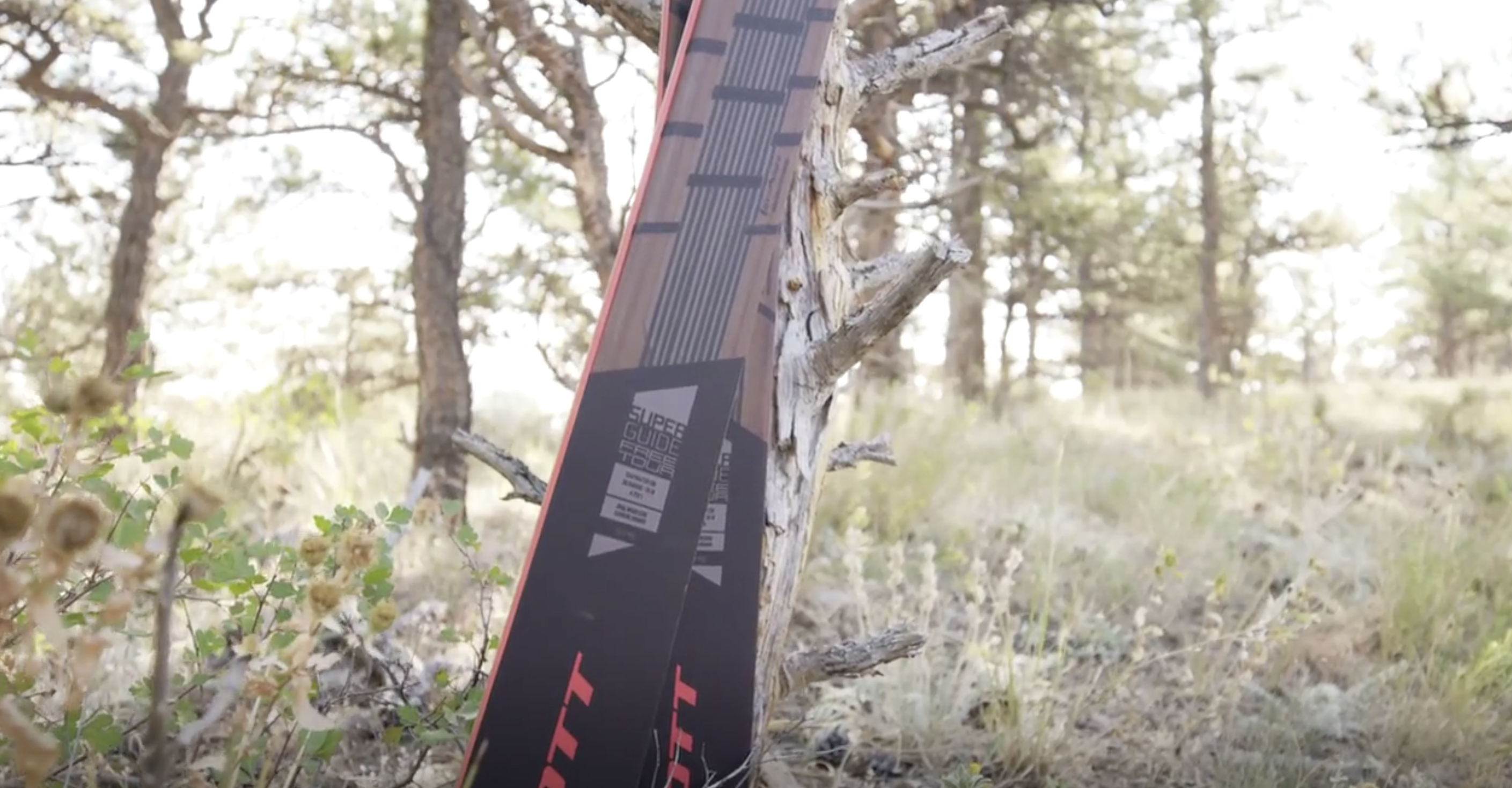 Editors' Choice Fall 2020: Scott Superglide Freetour Ski