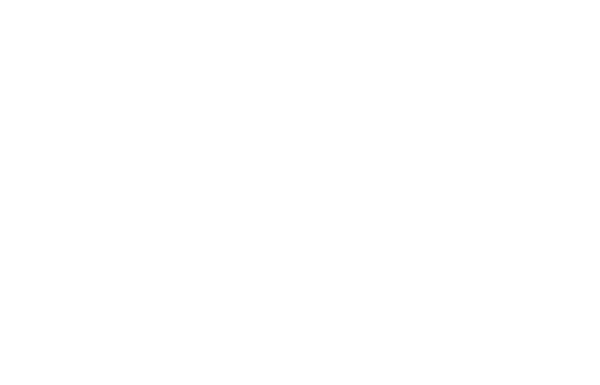 Bearpacker